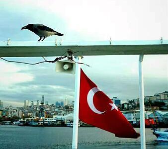 青岛去土耳其旅游团-伊斯坦布尔,棉花堡,费特希耶滑翔伞,安塔利亚游船,小番红花城12日游q