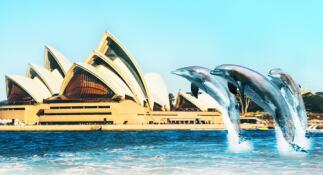 青岛去澳洲旅游多少钱-澳大利亚,凯恩斯,大堡礁,悉尼歌剧院,可伦宾动物园8日游q