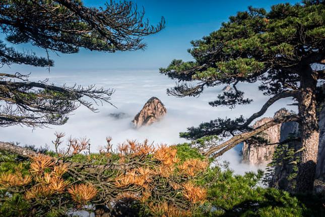 青岛旅行社十一国庆旅游-青岛出发到黄山、千岛湖、婺源篁岭、双古街、双飞4日游